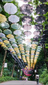 訪問福祉理美容 美々ネット埼玉 傘アートワーク景色写真